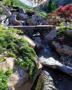water fatures