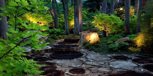 Stone path in a backyard